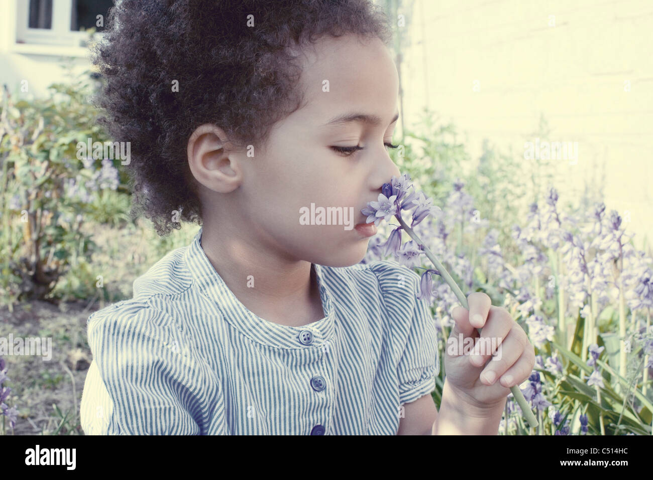 Little girl smelling purple flowers - Stock Image
