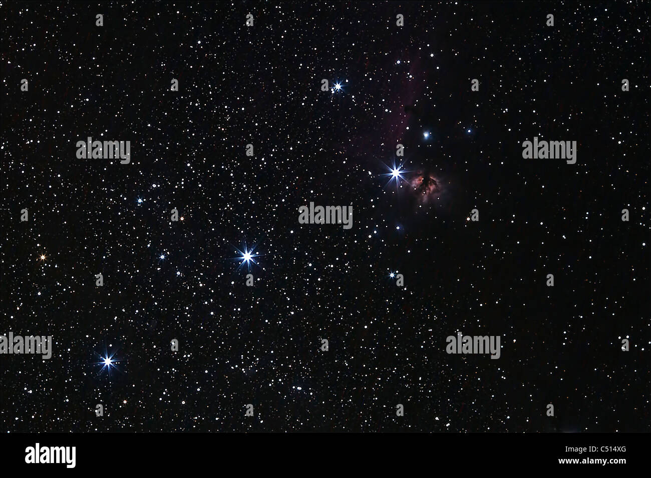 Orion's Belt, Horsehead Nebula and Flame Nebula. - Stock Image