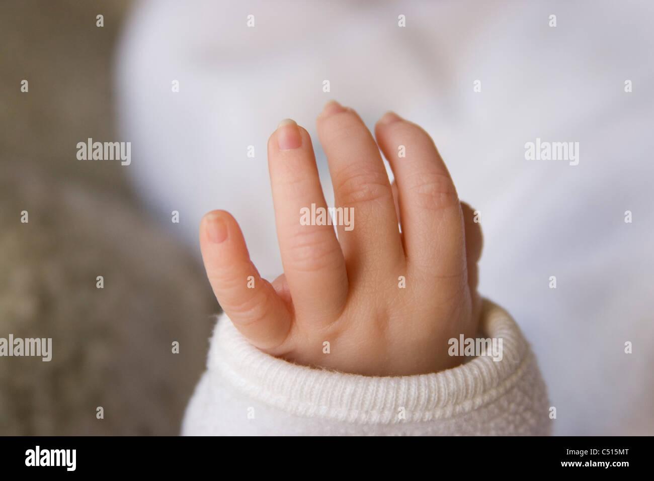 Baby's hand - Stock Image
