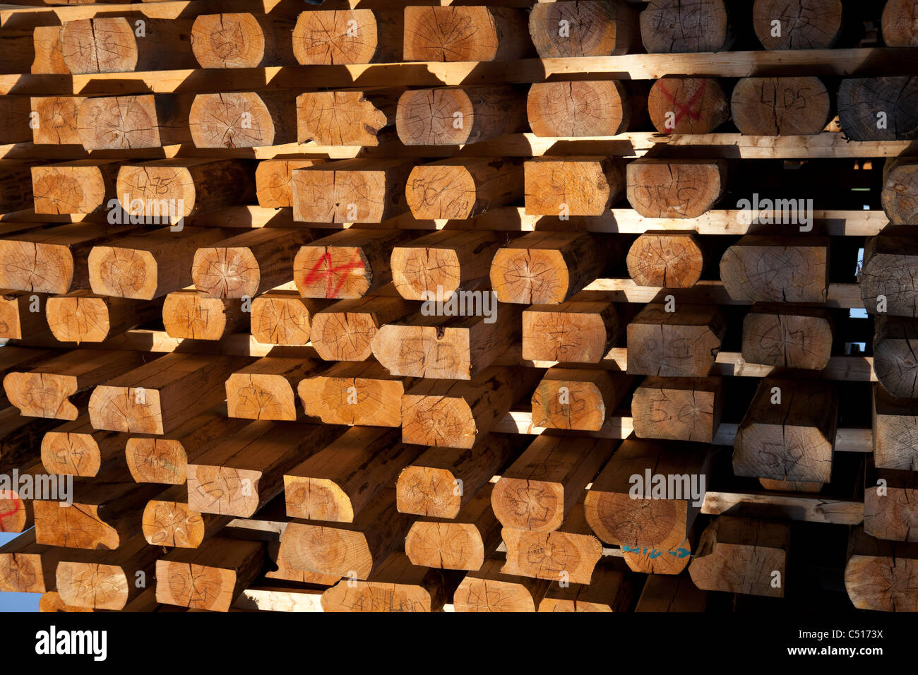 Wooden planks stacked in order with a radiant warmth from the remainder of the sunset - Stock Image