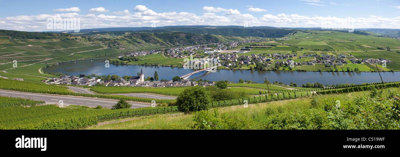 Panorama von Piesport an der Mosel Mittelmosel, Rheinland-Pfalz, Deutschland, Moselle Mosel river Rhineland-Palatinate - Stock Image