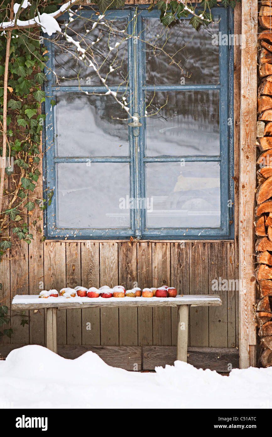 apples on bench in front of house in winter - Stock Image