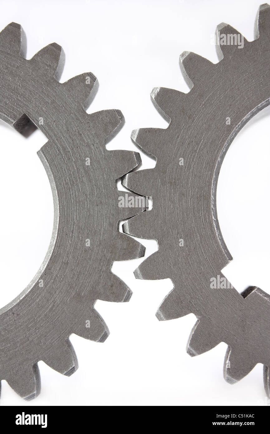 There are two gears close-up on white background - Stock Image