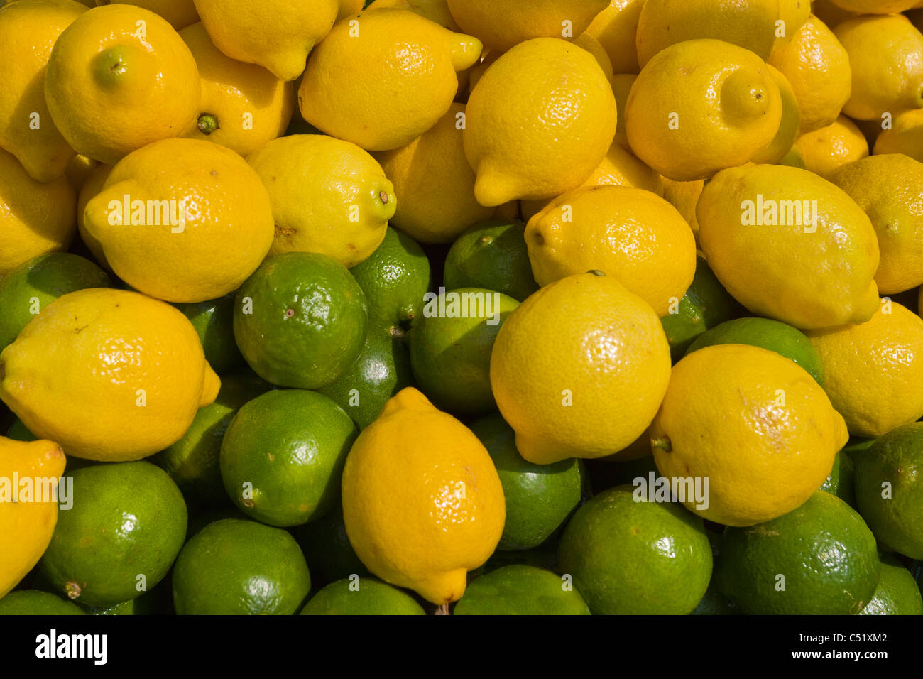 Lemons and Limes at Public Market in Rochester New York - Stock Image