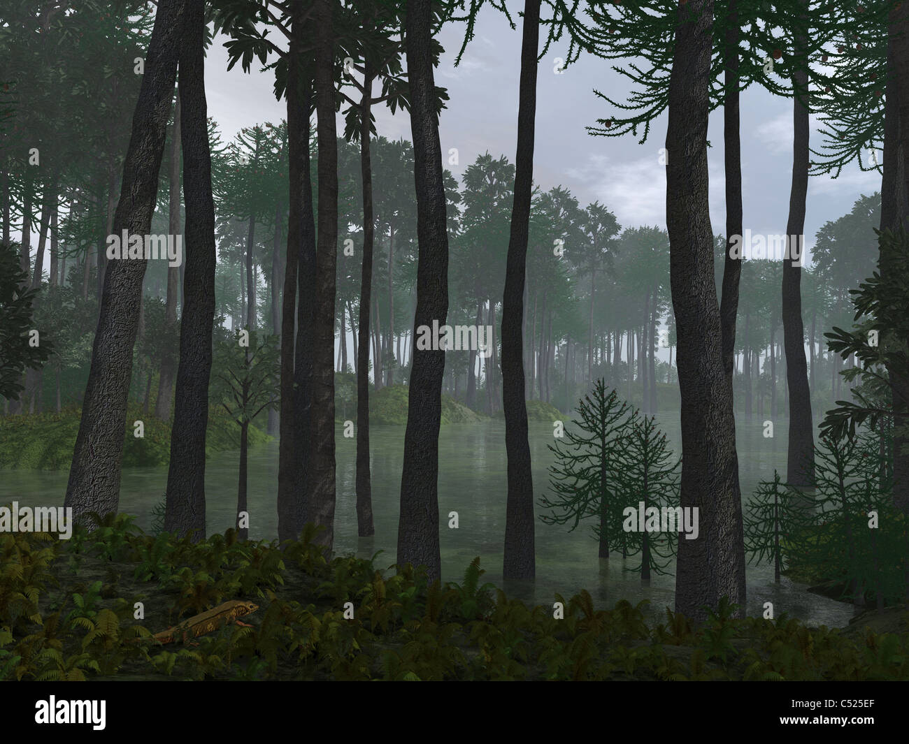 A forest of Cordaites and Araucaria. - Stock Image