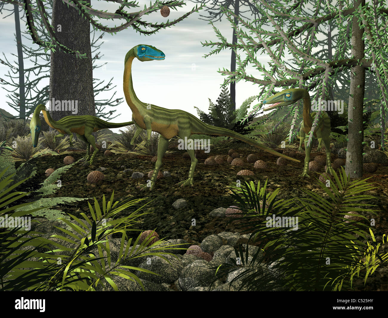 Coelophysis dinosaurs walk amongst a forest. - Stock Image