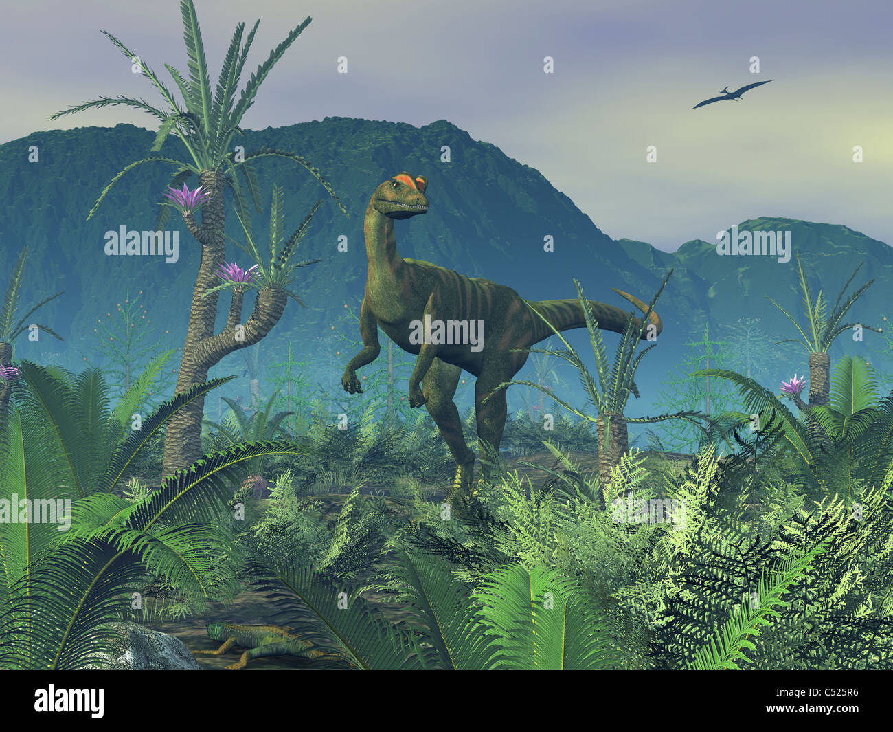 A colorful adult male Dilophosaurus explores a hilltop. - Stock Image