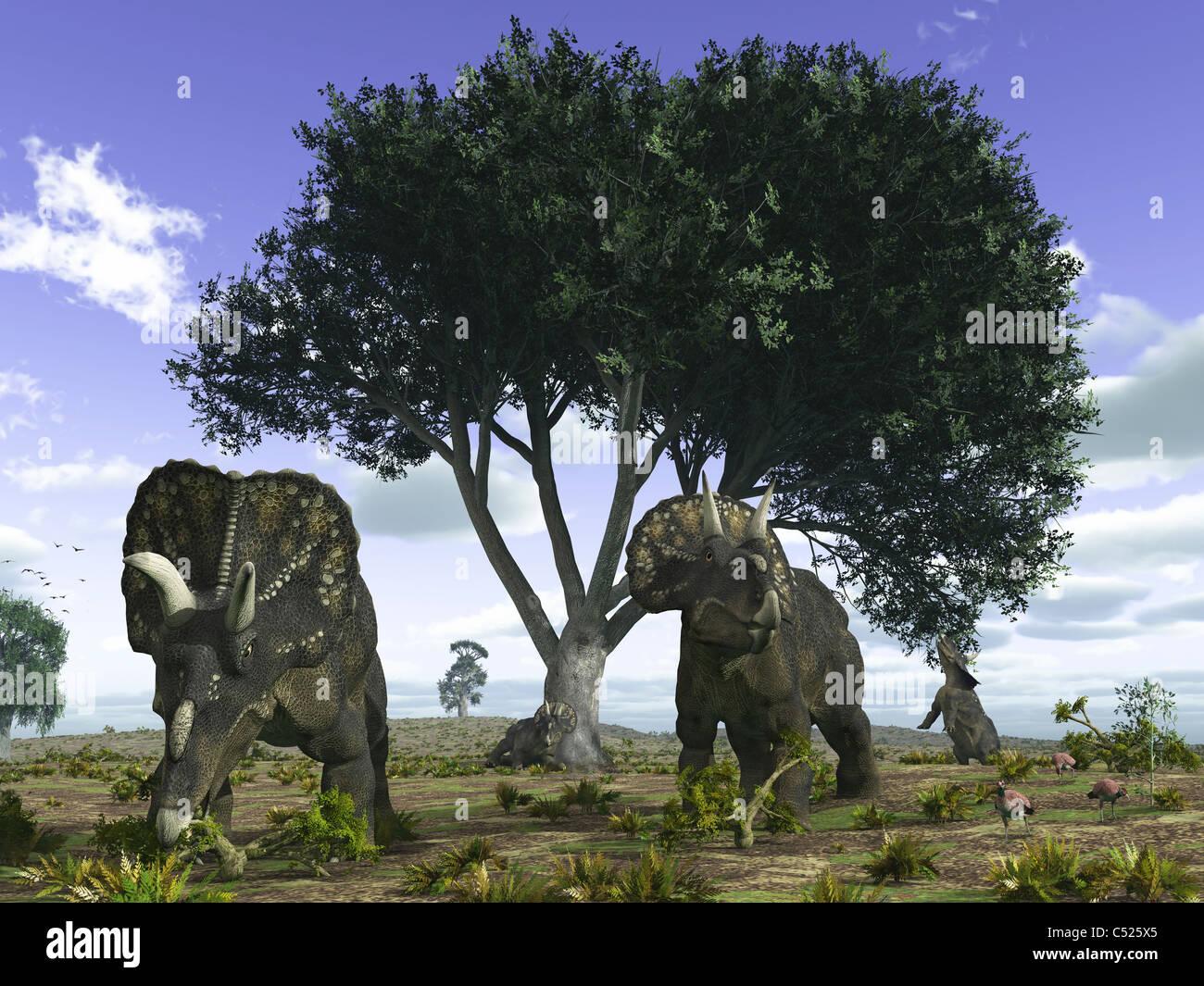 Nedoceratops graze beneath a giant Oak Tree. - Stock Image