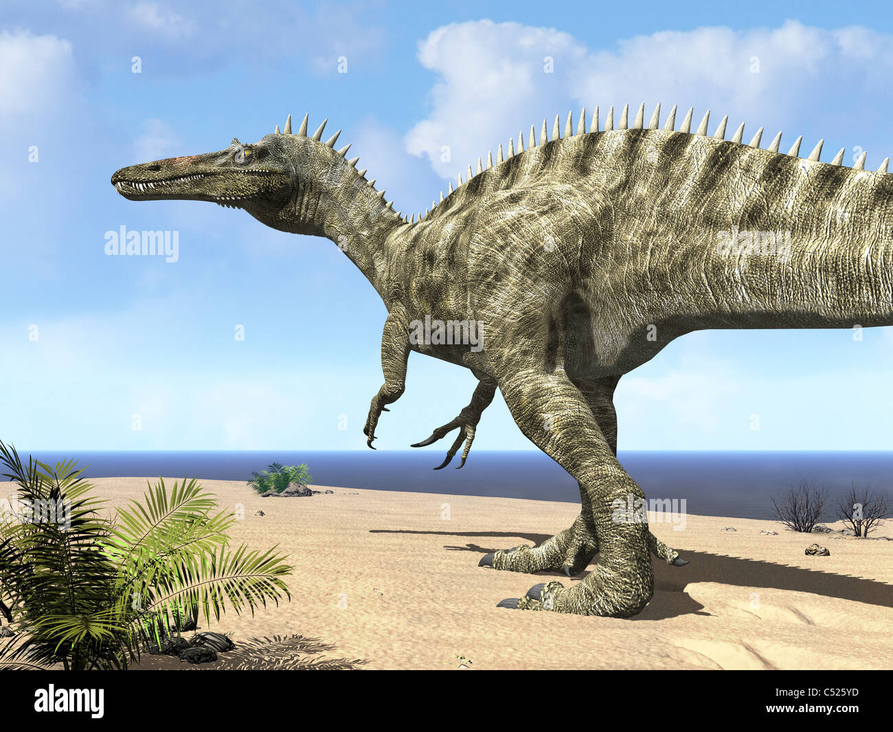 A carnivorous Suchomimus wanders a beach on the ancient Tethys Ocean. - Stock Image