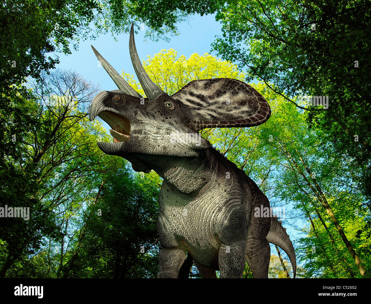 A Zuniceratops wanders a Cretaceous forest. - Stock Image