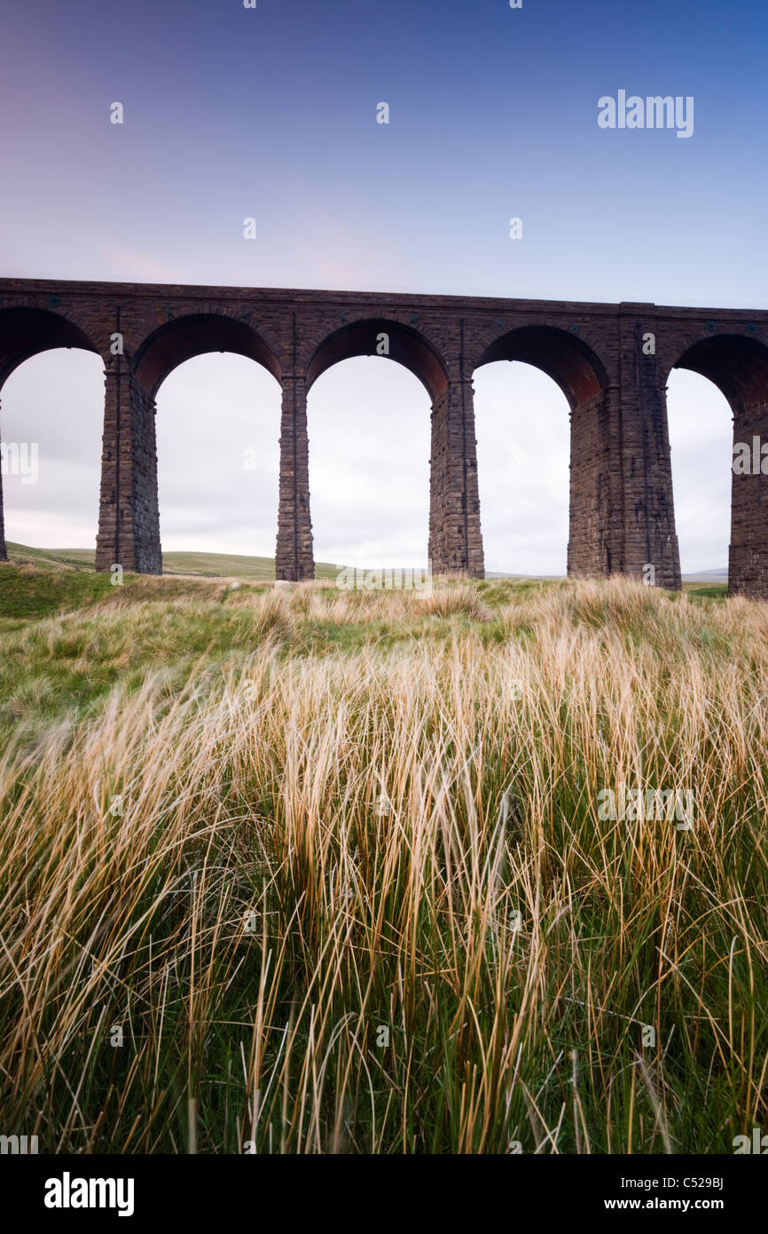 Ribblehead Viaduct, North Yorkshire, UK - Stock Image