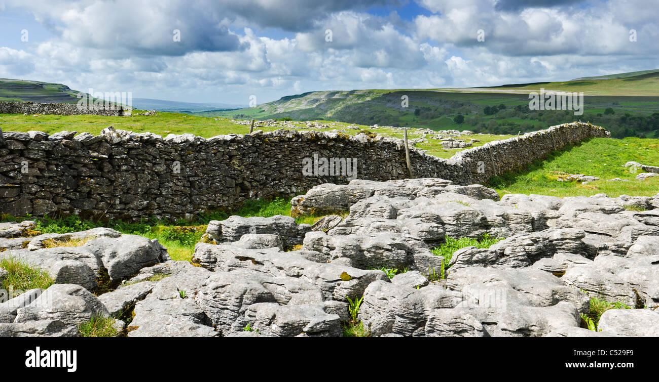 Limestone pavement at Chapel-le-Dale, Yorkshire Dales, UK. - Stock Image