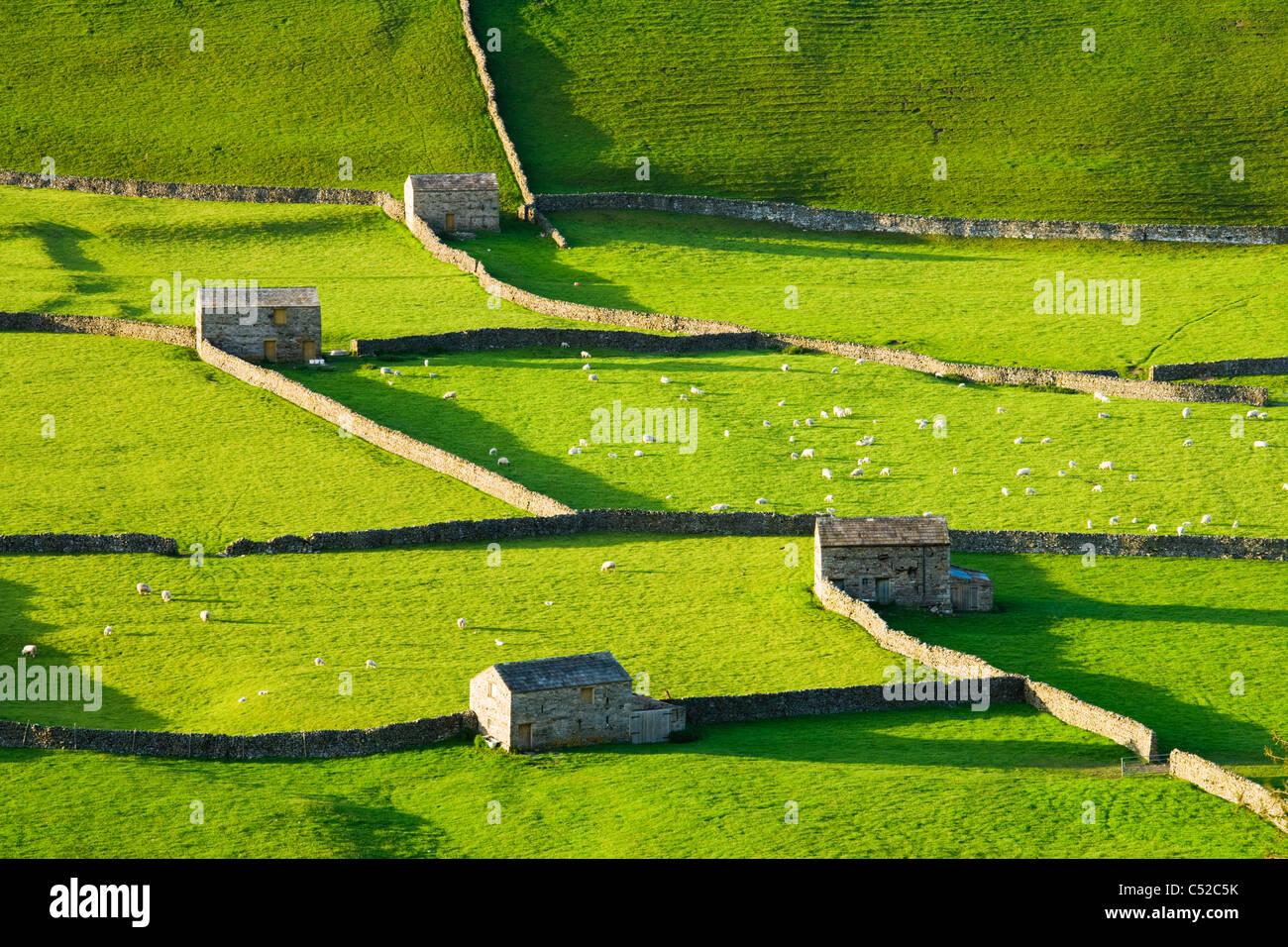 Gunnerside, Swaledale, Yorkshire Dales National Park, UK - Stock Image