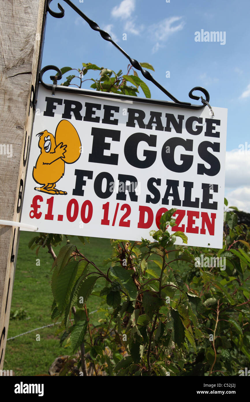 Free range eggs for sale on a farm in Derbyshire, England, U.K. - Stock Image