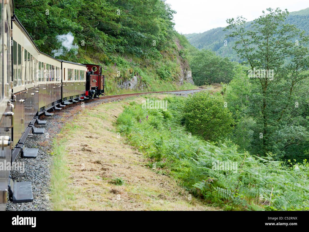 Vale of Rheidol Railway line between Aberystwyth and Devils Bridge, Wales, United Kingdom - Stock Image