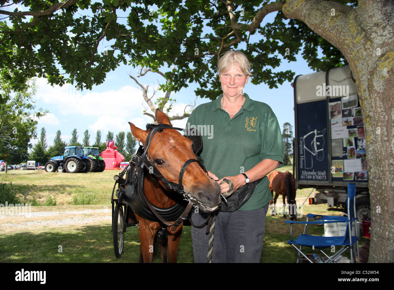 A Caspian Horse and trap giving rides at an English country show in Cannington Somerset England UK - Stock Image