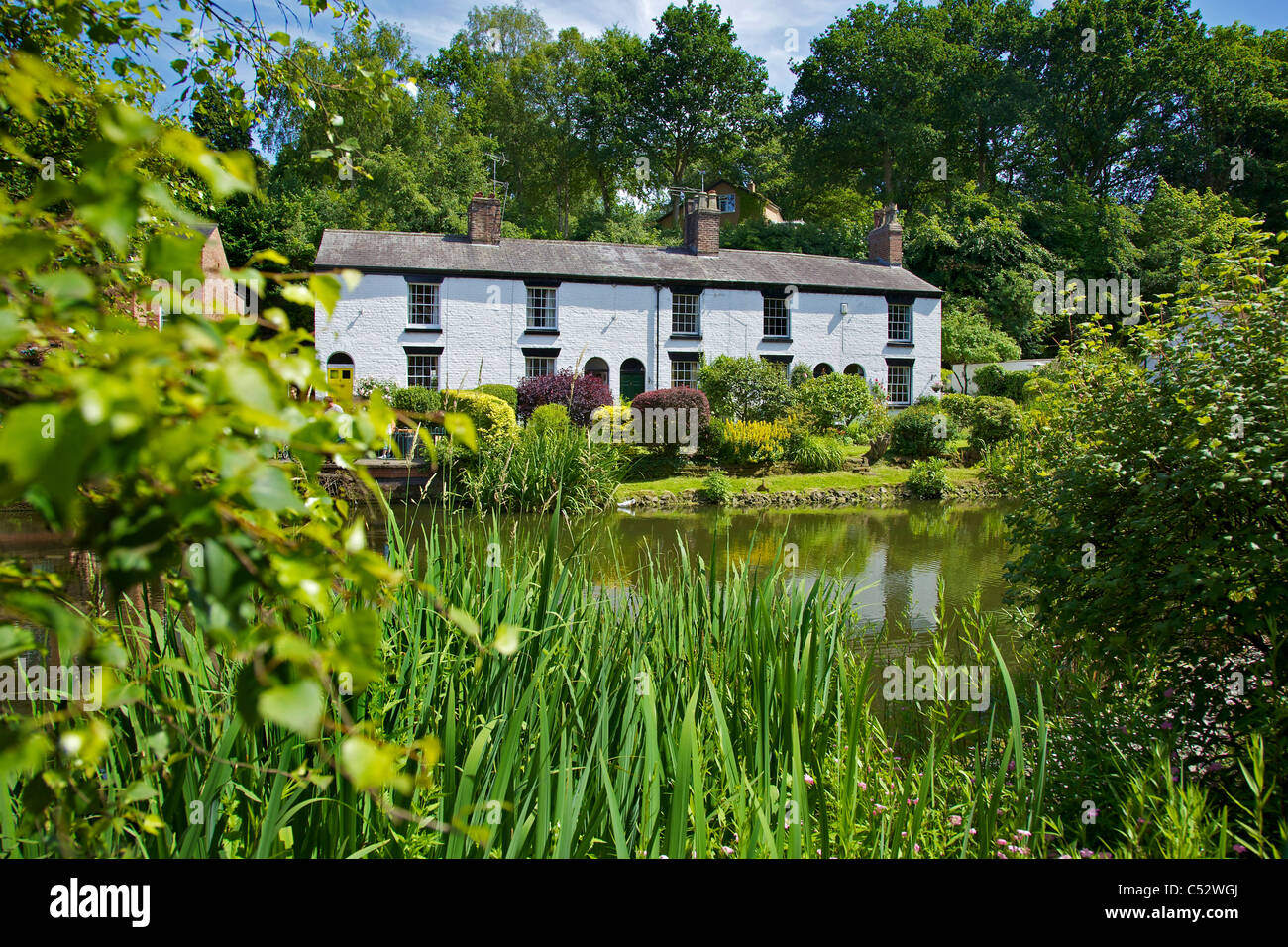 Cottages in The Dingle, Lymm Cheshire. - Stock Image