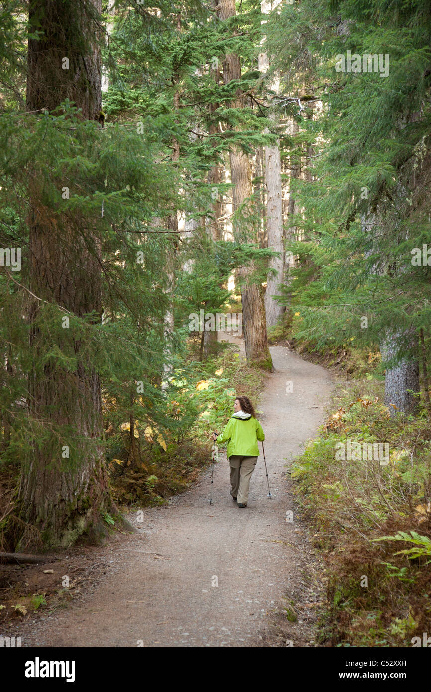 Woman hiking on Winner Creek Trail in Spruce and Hemlock boreal rain forest near Girdwood, Chugach National Forest, - Stock Image