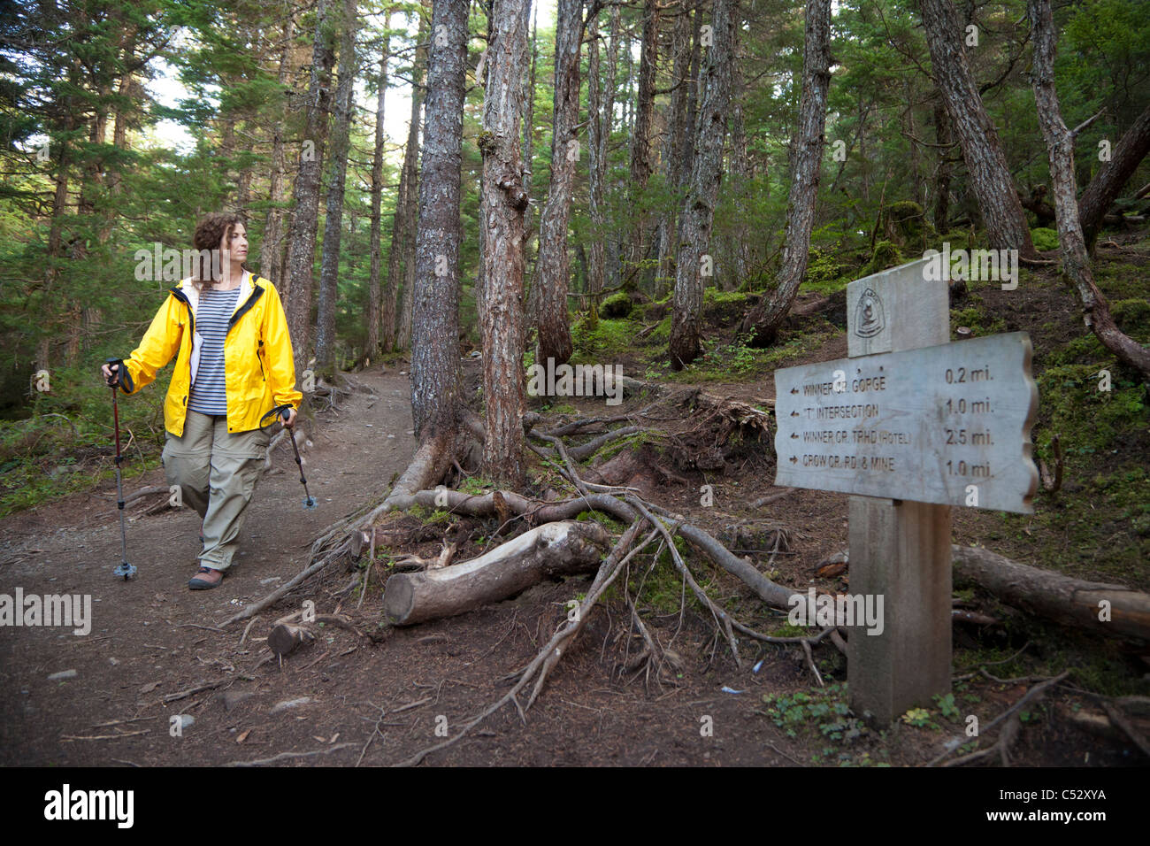 Woman hiking by a mileage marker on Winner Creek Trail in near Girdwood, Chugach National Forest, Southcentral Alaska, - Stock Image