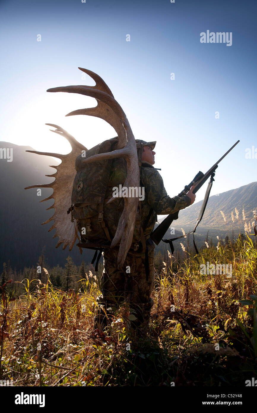 Moose hunter carries a large moose antler rack as he hikes out from hunting, Bird Creek drainage area, Chugach Mountains, - Stock Image