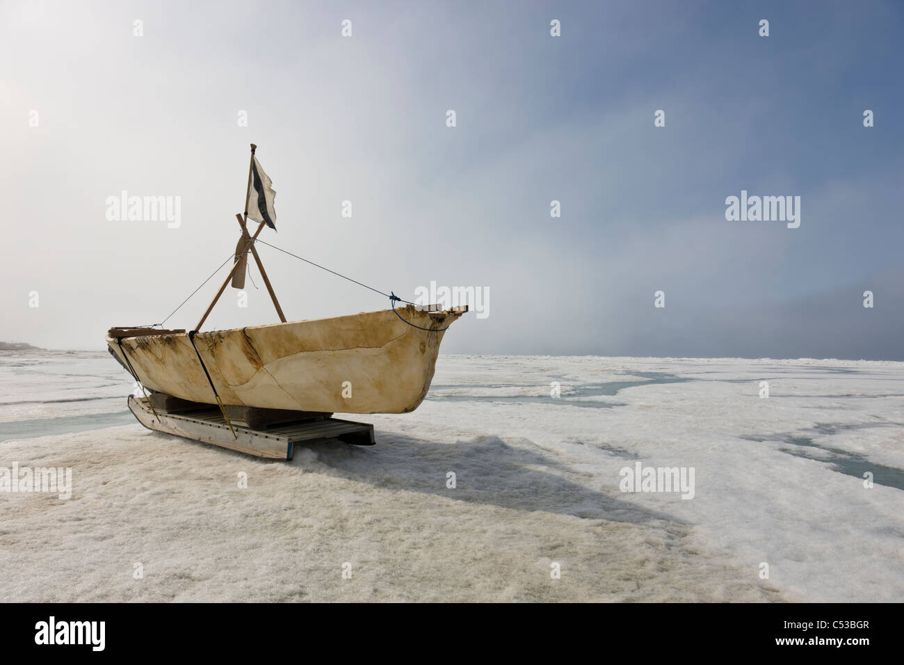 Inupiaq Eskimo Skin Boat  made from bearded seal skin resting on the shore ice of the Chukchi Sea off shore of Barrow, - Stock Image
