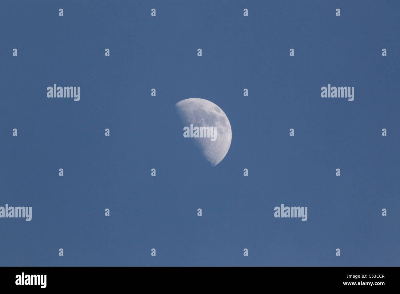 waxing moon seen at first quarter in early spring in the united kingdom - Stock Image