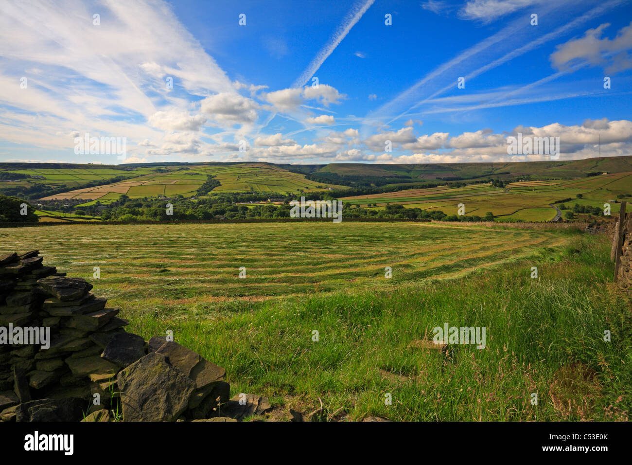 Mown silage field and view towards Ramsden Clough near Holmfirth, West Yorkshire, Peak District National Park,  Stock Photo