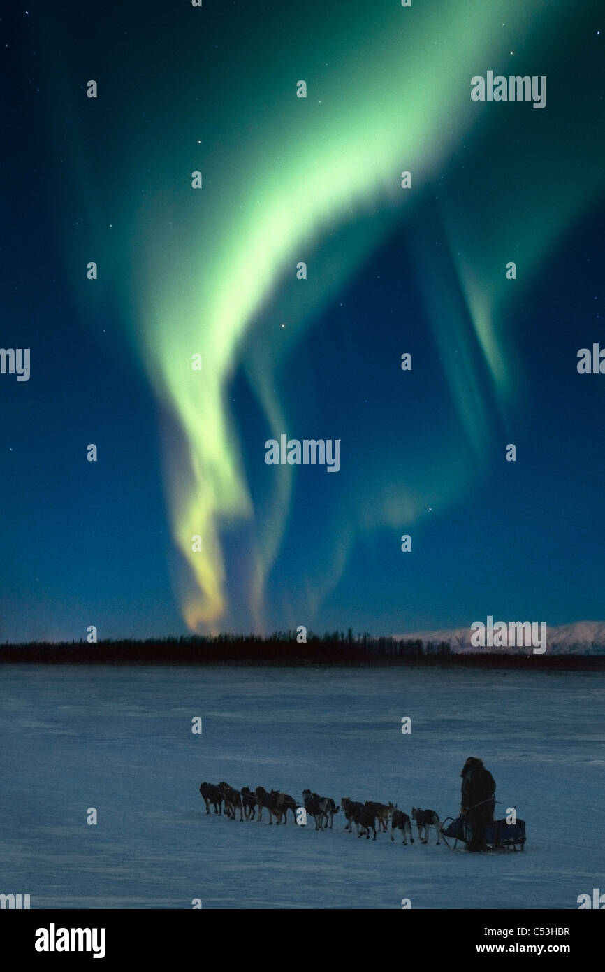 Scenic view of musher with Northern Lights overhead Alaska, Winter. COMPOSITE - Stock Image
