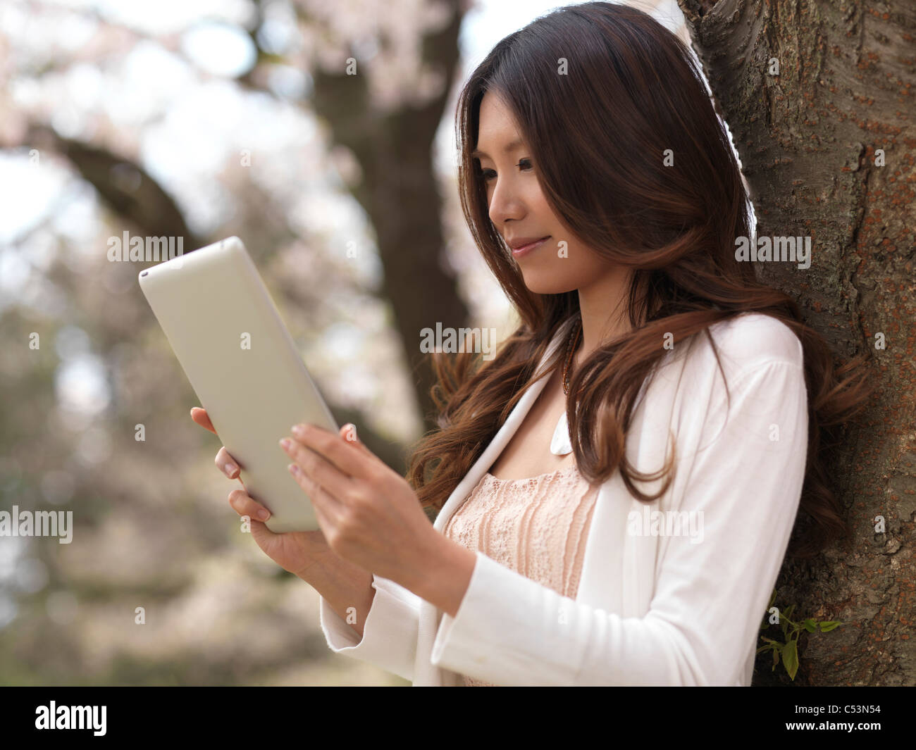 Young Asian woman with a tablet computer in a park under a cherry tree - Stock Image
