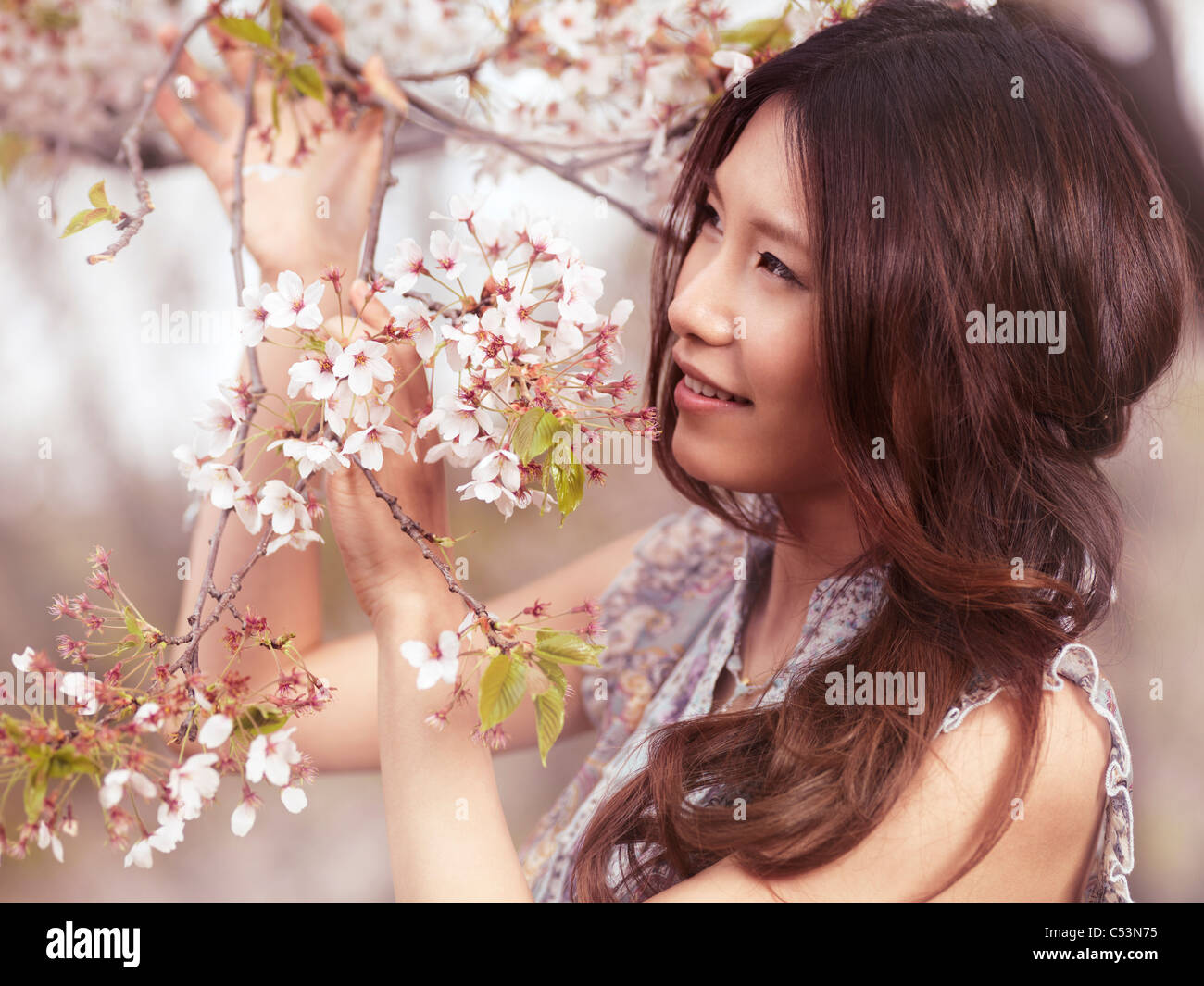 Portrait of a beautiful young smiling Asian woman standing at a blooming cherry tree in a park - Stock Image
