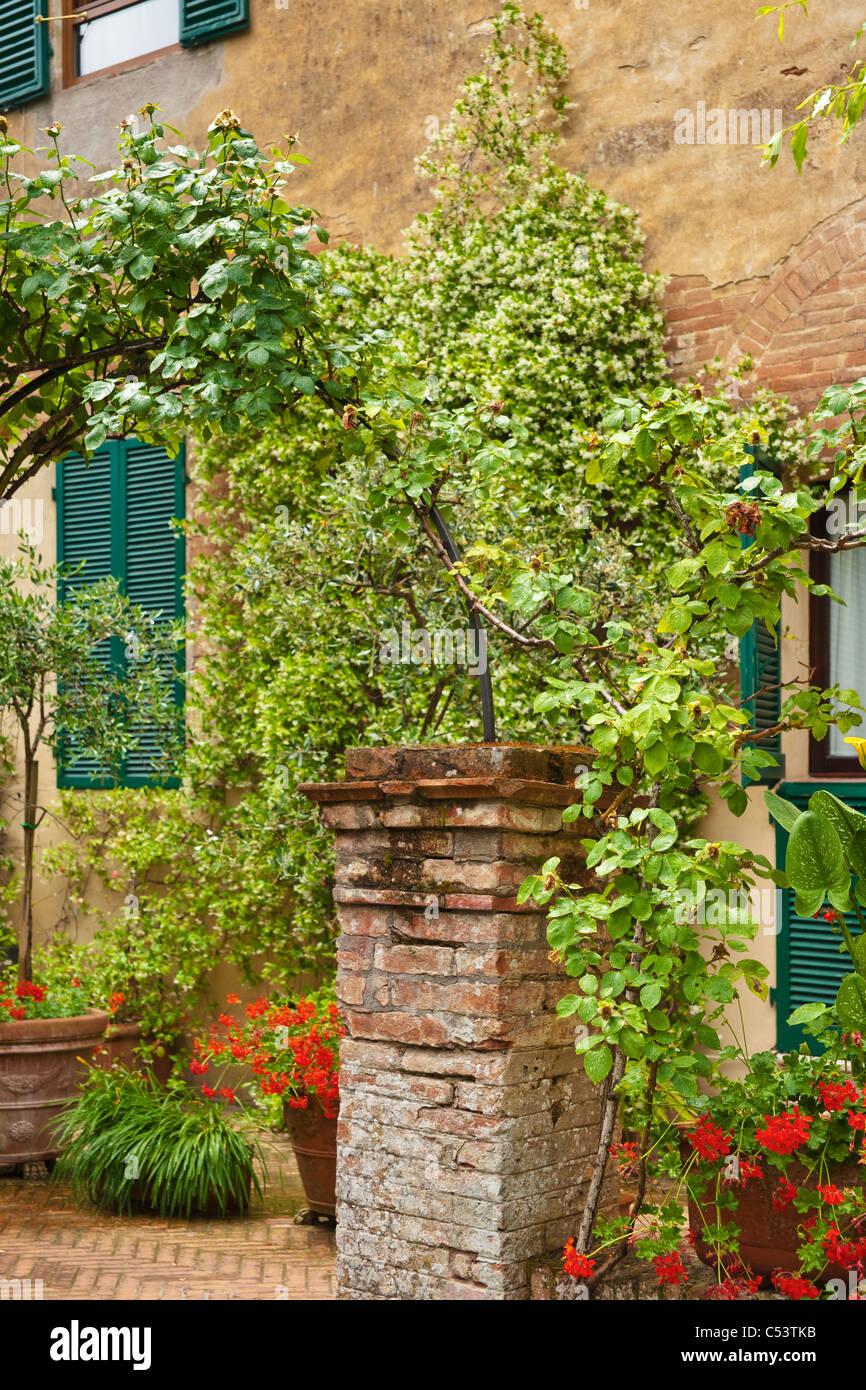 typischer Garten in der Toskana, Mittelitalien, Italien, Europa   typical garden in Tuscany, Siena, Central Italy, - Stock Image
