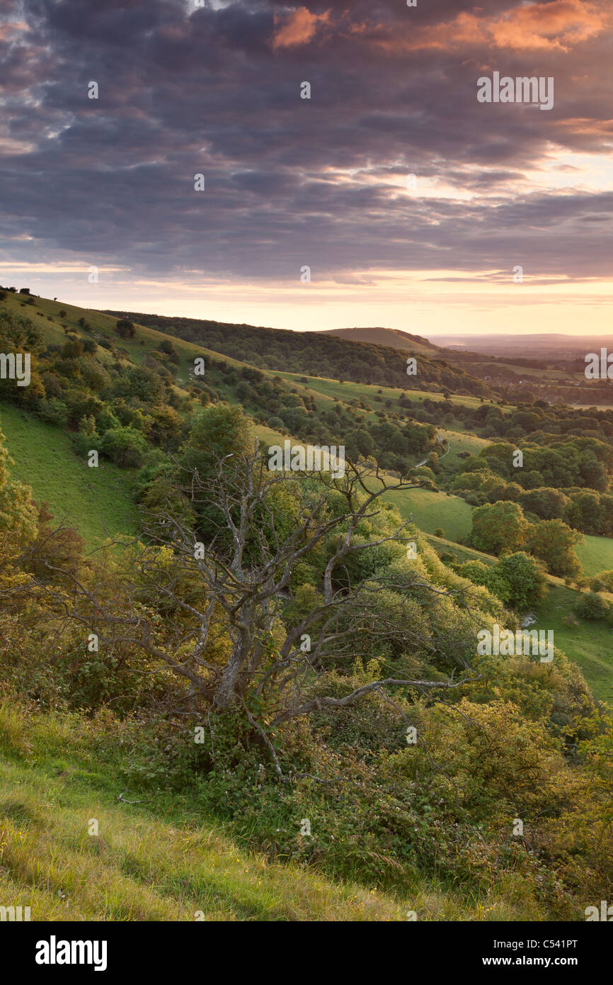 A beautiful sunset over the South Downs National Park near Ditchling Beacon, East Sussex, England, UK - Stock Image