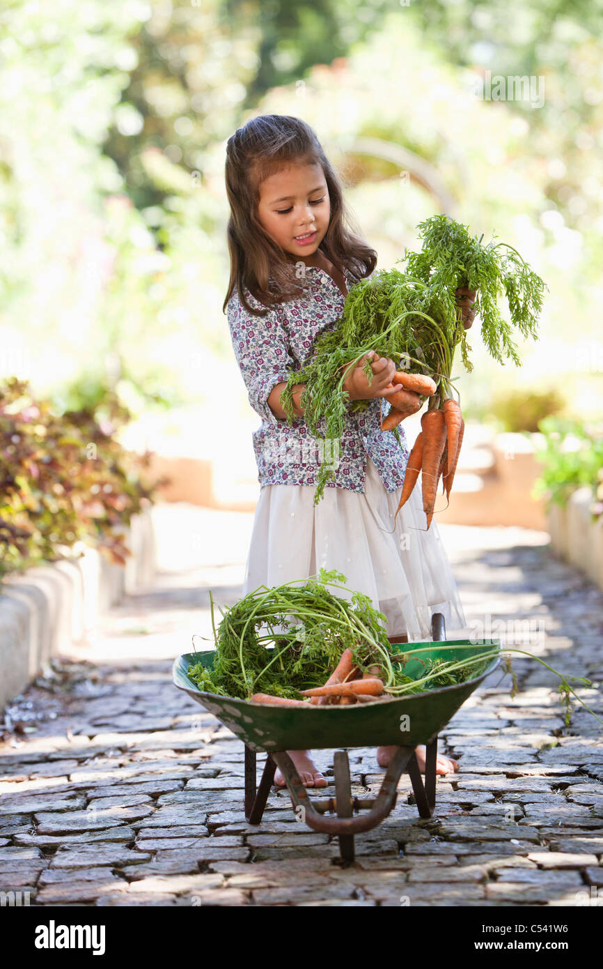 Cute girl putting carrots in a wheelbarrow - Stock Image