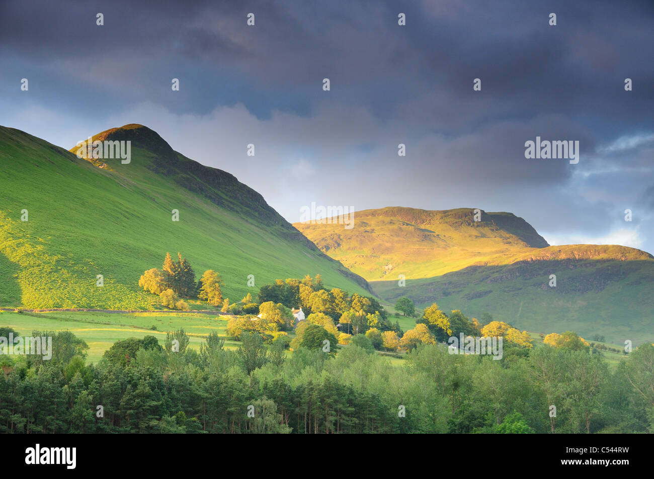 Cat Bells and Maiden Moor in golden summer morning sunlight in the English Lake District - Stock Image