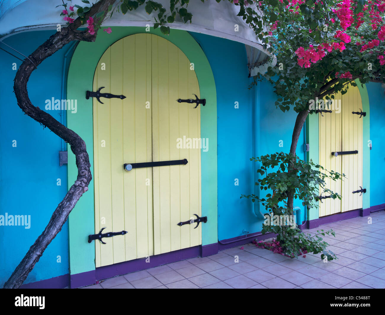 Store front doors with Bouganvilla. St. John. Virgin Slands St. John. Virgin Islands. - Stock Image