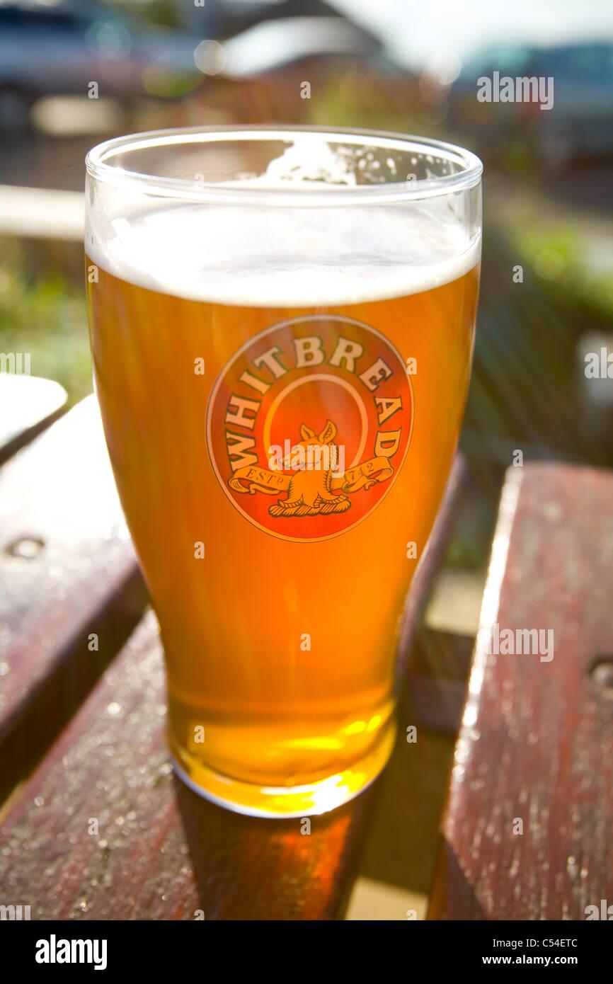 pint, beer, Woodvale, pub, Gurnard, isle of wight, England, UK, - Stock Image