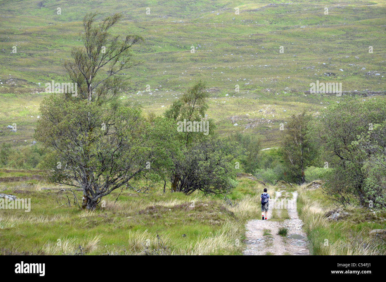 A walker on the track from Blackwater Reservoir down to Kinlochleven in the Scottish Highlands. - Stock Image