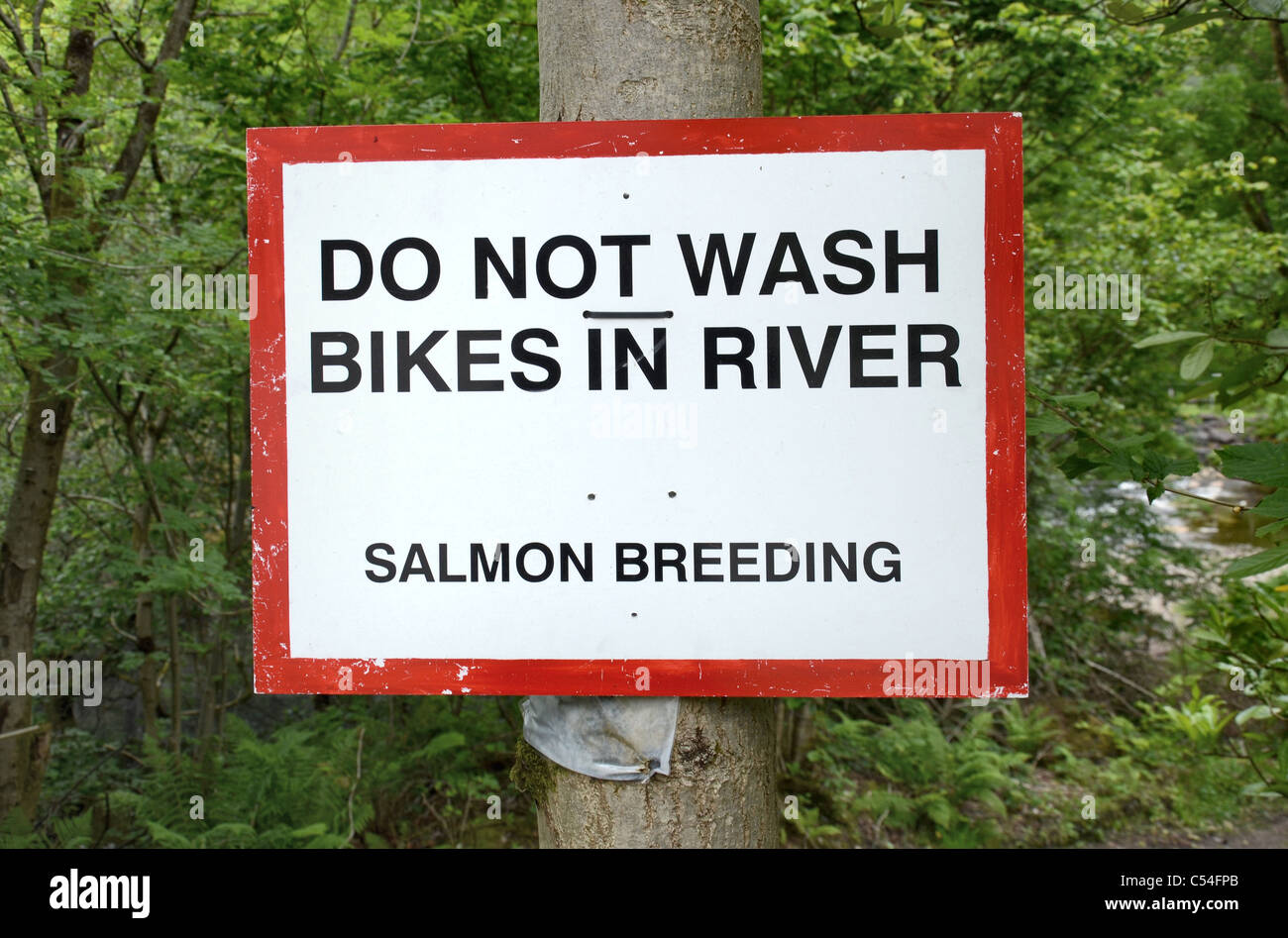 'Do not wash bikes in river - Salmon Breeding' sign by the Blackwater Hostel in Kinlochleven, Lochaber, - Stock Image