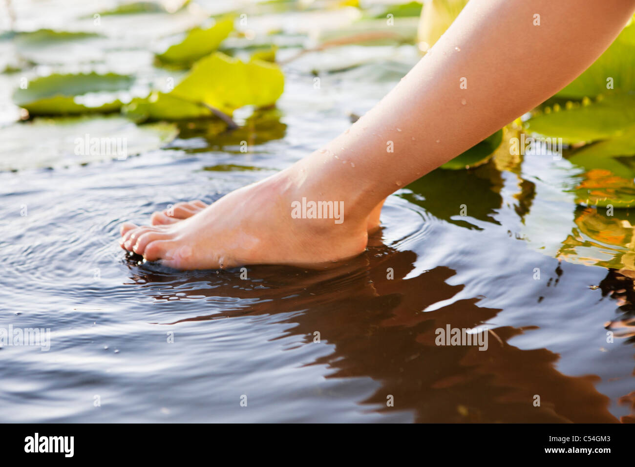 Close-up of a woman's leg in pond - Stock Image