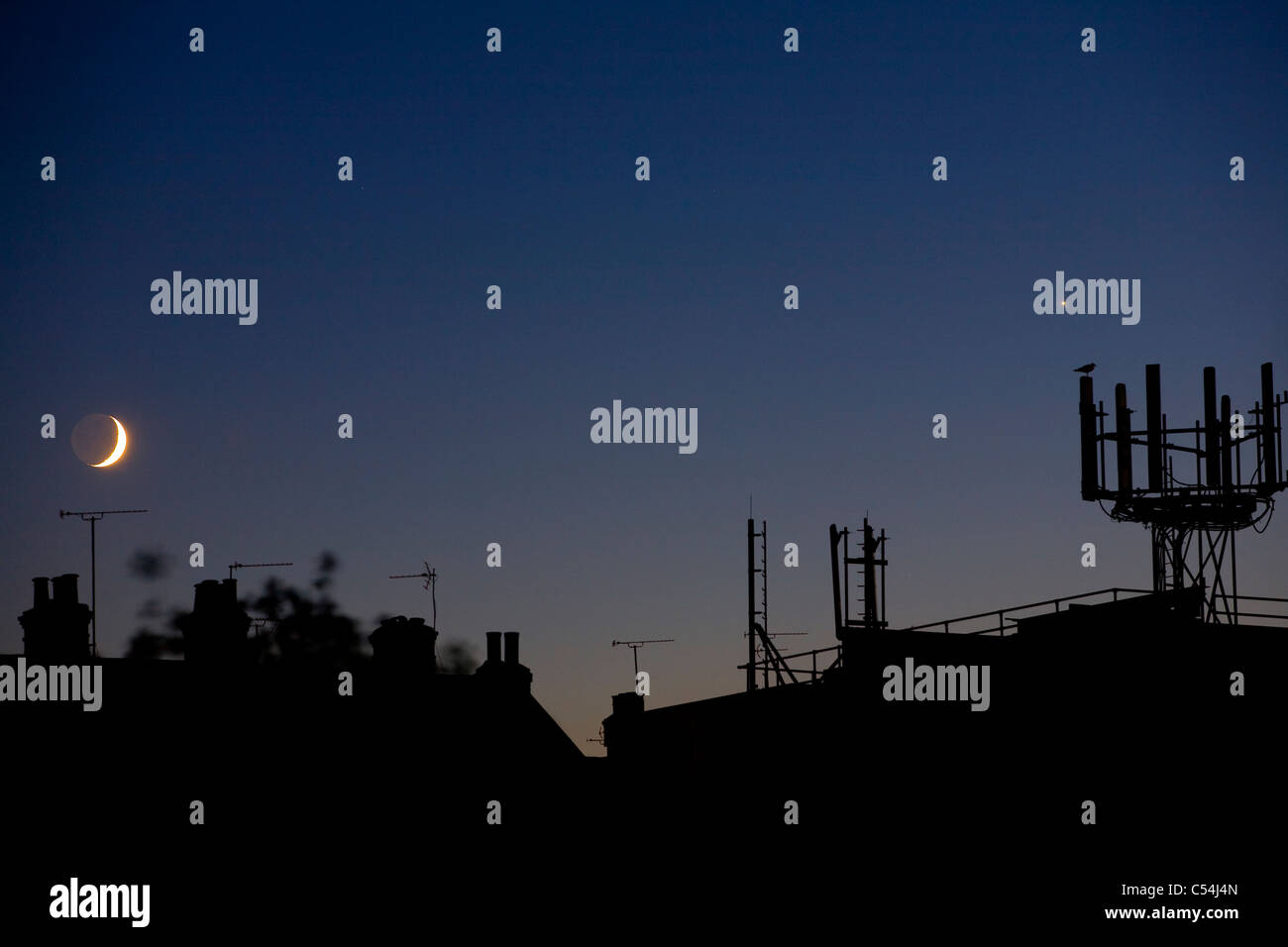 Roof Tops, aerials, chimneys, micro wave, towers, mobile phone, Cowes, Isle of Wight, England, UK, - Stock Image