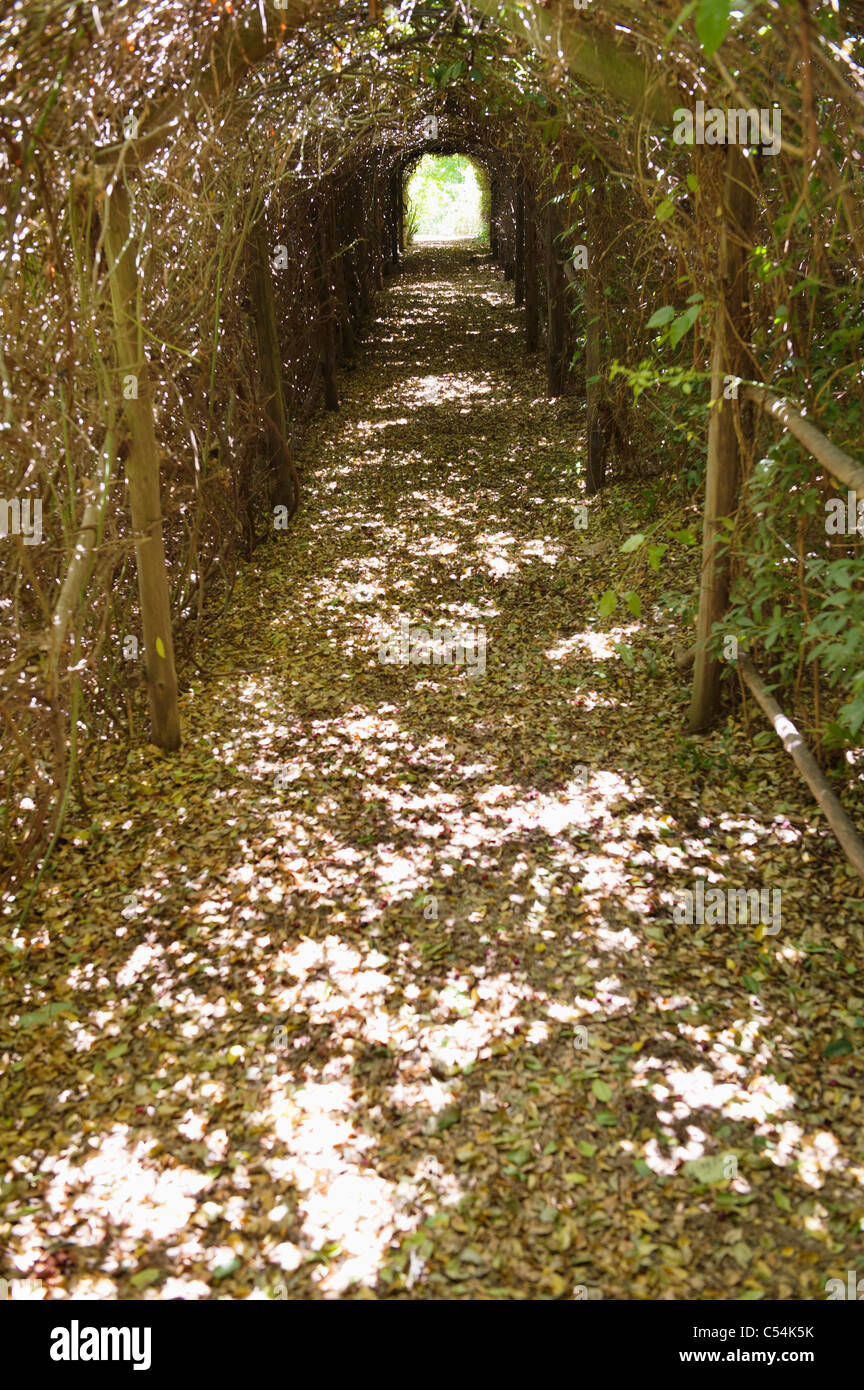 Narrow path passing through a tunnel - Stock Image