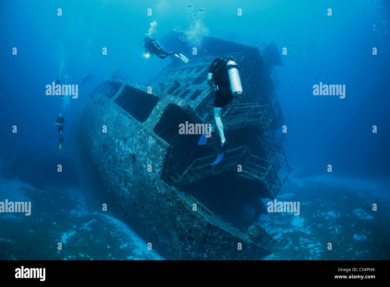 Taucher am Schiffswrack der Odyssey, Diver at the ship wreck - Stock Image