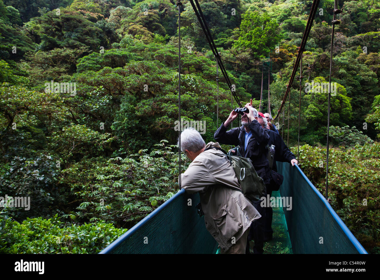 Ecotourism hanging bridge canopy walkway in tropical jungle and rainforest - Stock Image