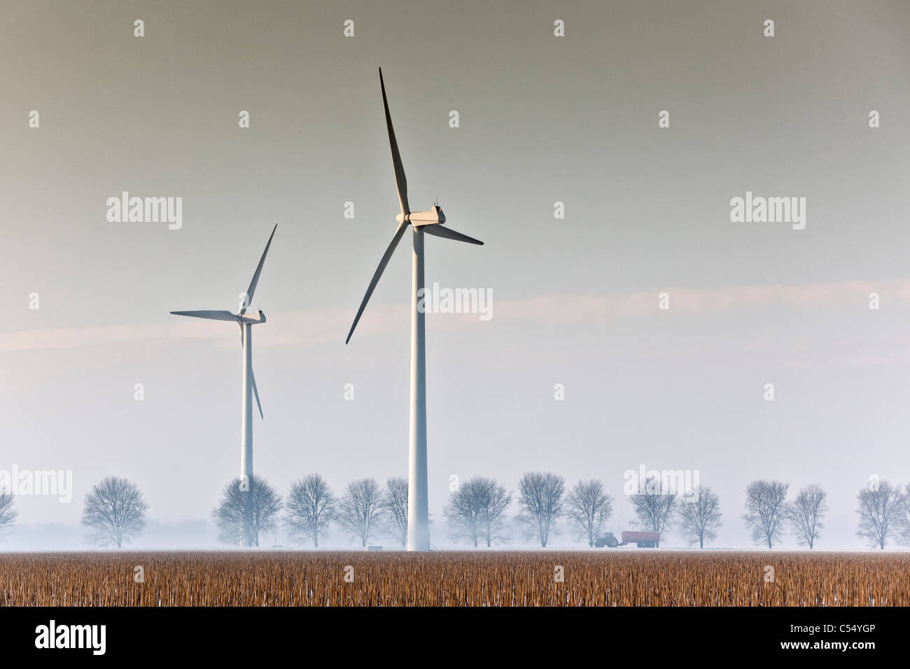The Netherlands, Lelystad, Windturbines and tractor - Stock Image