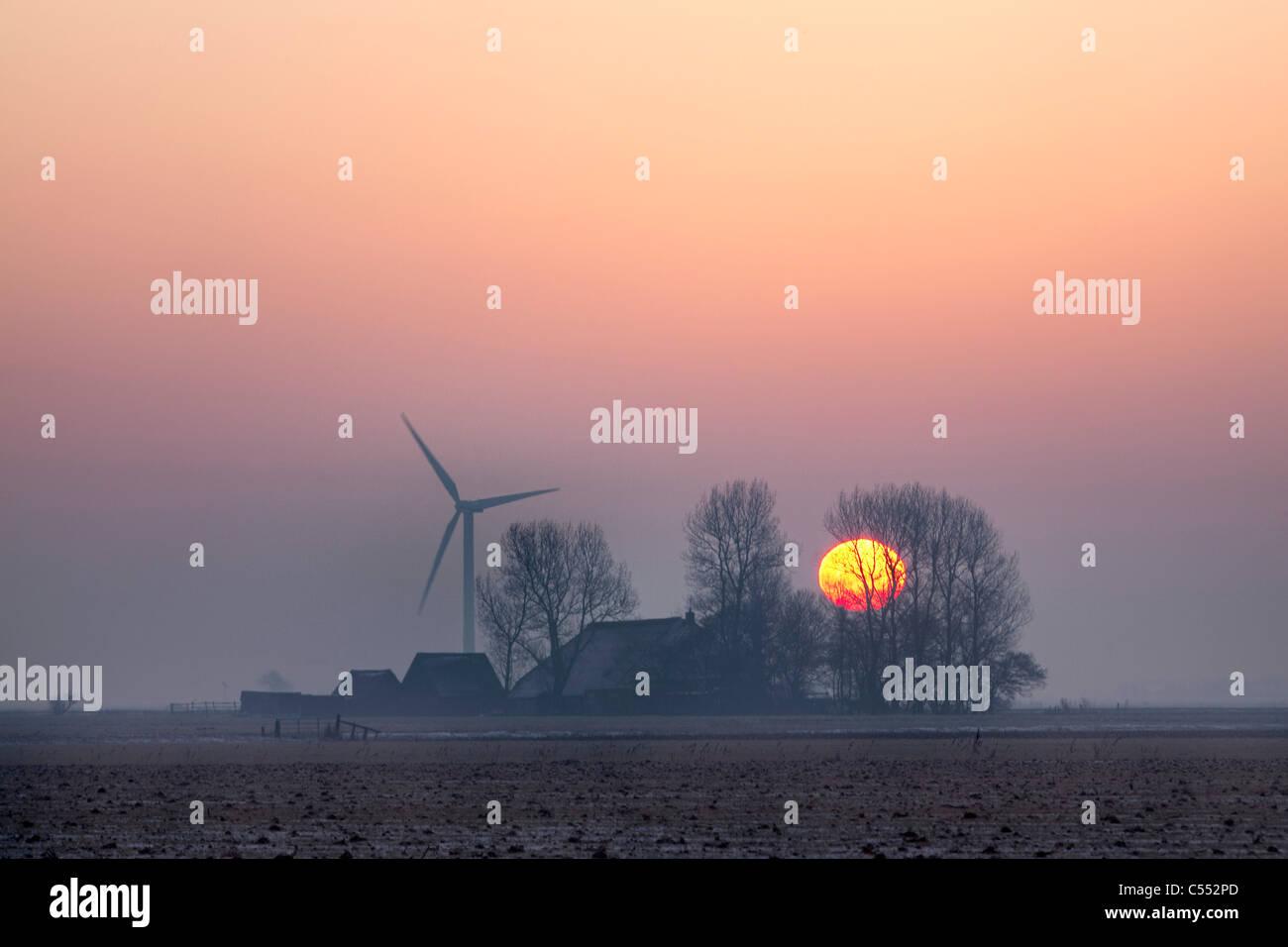 The Netherlands, Hijum, farm, wind turbine, sunrise. - Stock Image