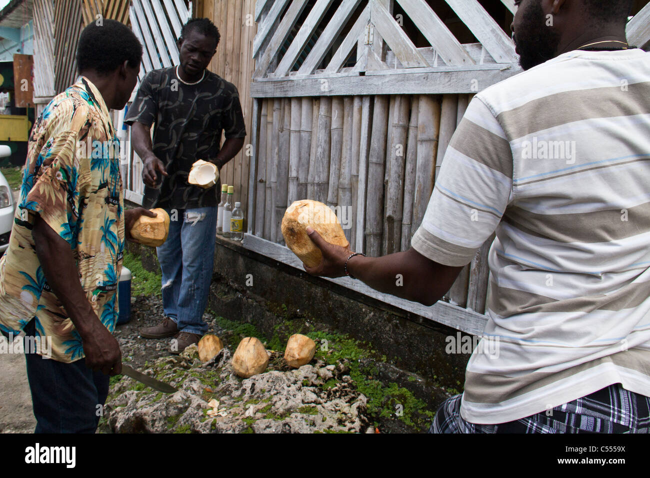 selling coconuts in Ocho Rios Jamaica - Stock Image