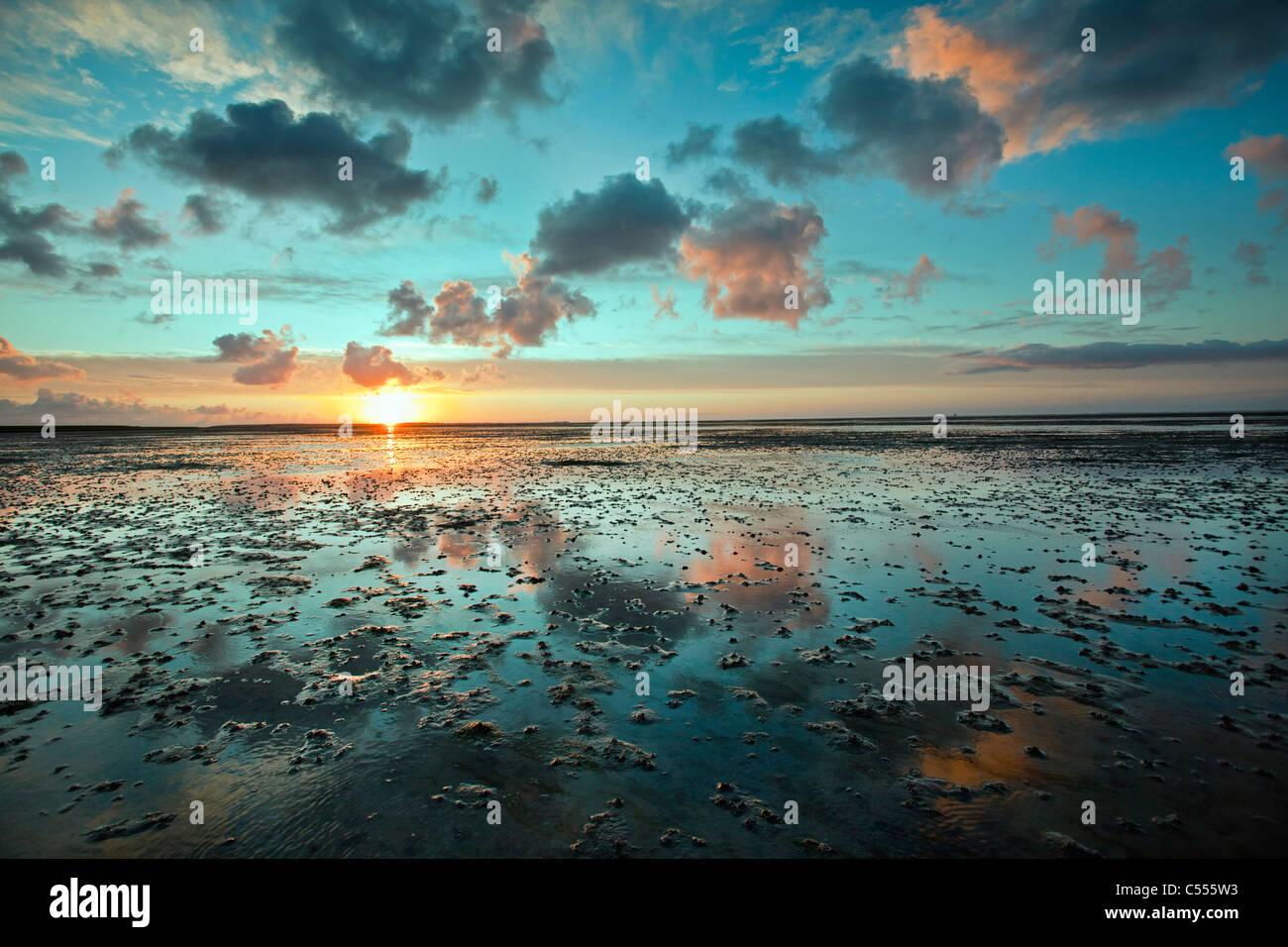The Netherlands, Buren, Ameland Island, belonging to Wadden Sea Islands. Unesco World Heritage Site. Mud flats. - Stock Image