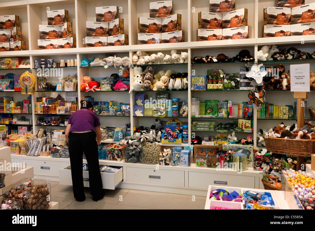 shop of the Ulster Museum, Belfast, Northern Ireland, UK - Stock Image