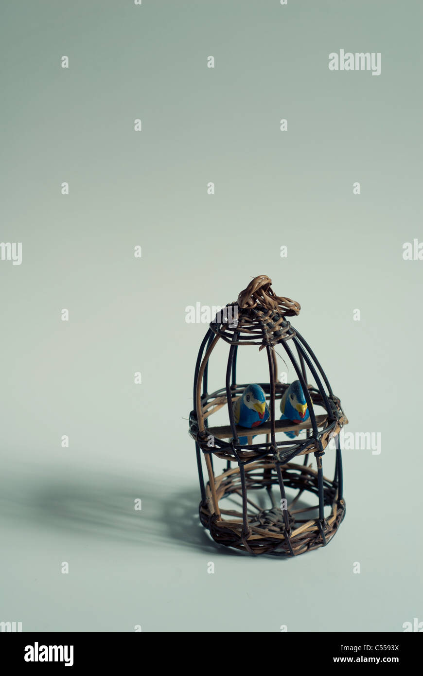 Wooden cage and birds - Stock Image