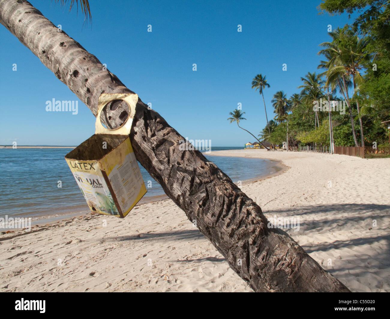 Litter bin hanging from palm tree on beach at Boipeba Island, Bahia, Brazil - Stock Image